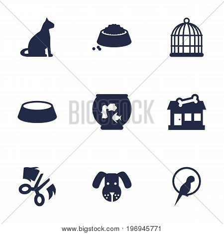 Collection Of Food, Head, Sitting And Other Elements.  Set Of 9 Pets Icons Set.