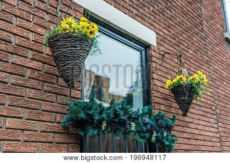 Hanging yellow sunflower daisy flower pots cones on brick building in urban area in Montreal Canada