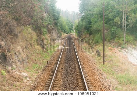 Railroad track winding through green misty forest train point of view.