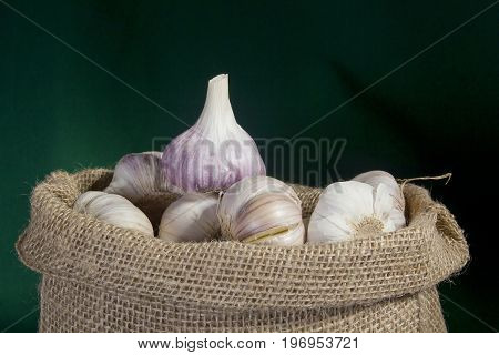 Garlic in a bag on a green background