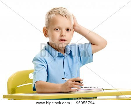 Portrait of minded schoolboy thinking how to do homework