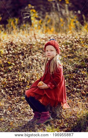 Pretty little girl wearing red coat in autumn forest