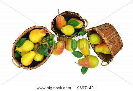 Delicious aromatic pears scatter from wooden baskets. Isolated on white background without shadow. top view. Season. Harvest. Gardening. Hobby. Agriculture.