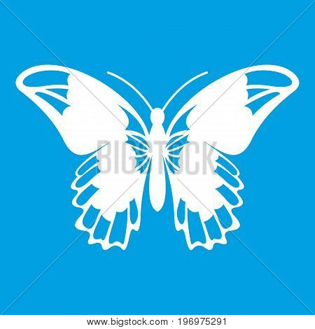Admiral butterfly icon white isolated on blue background vector illustration