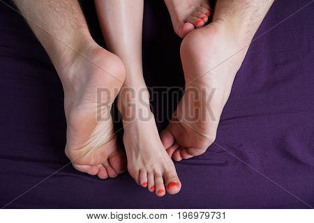 Female and male feet lie on a violet sheet. Lovers have sex.