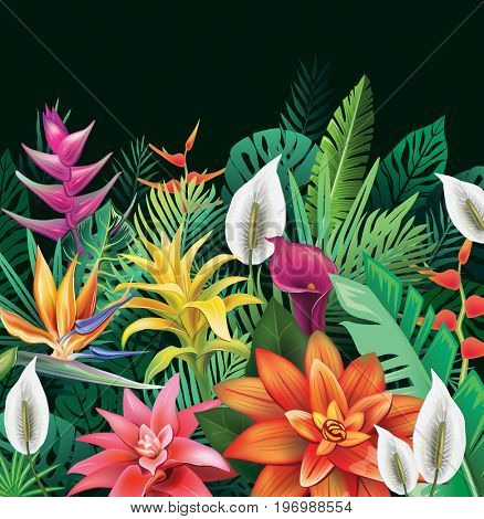Background from tropical flowers and leaves. Raster version