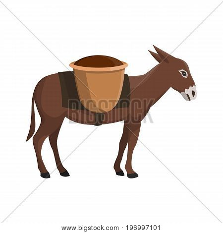 Vector illustration of a donkey on white background. Farm animals topic.