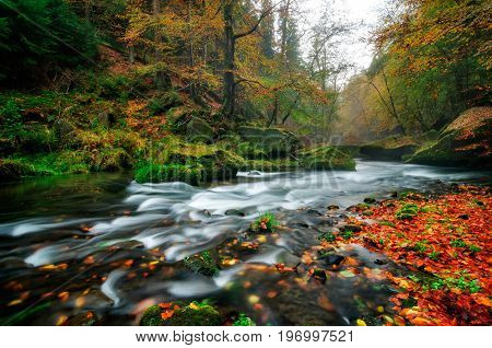 Rainy Autumn River At Edmund Gorge Of Bohemian Switzerland National Park, Czech Republic.