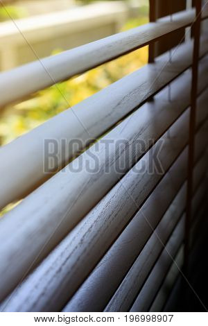 Window Blind Interior Decoration