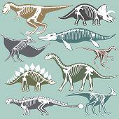 Dinosaurs skeletons silhouettes set fossil bone tyrannosaurus prehistoric animal and jurassic monster predator dino vector flat illustration.. Reptile extinct paleontology old bones. poster