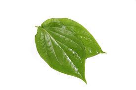 Couple Betel Leaves