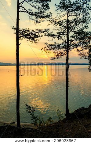 Summer sunset landscape - summer trees at the edge of the cliff and summer lake lit by sunset light. Colorful summer landscape evening scene