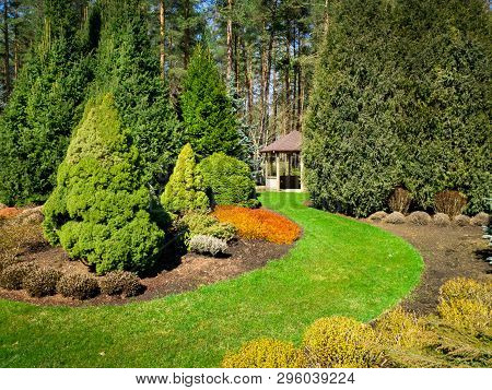 Beautiful Landscaped Garden With Conifers And Bower