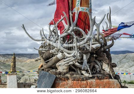 Horns, Tusks And Antlers Of Ancient Dead Animals, Upper Mustang, Nepal