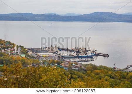Petropavlovsk-kamchatsky, Russia- 26 September 2014: View Of Port Petropavlovsk-kamchatsky, Avachins