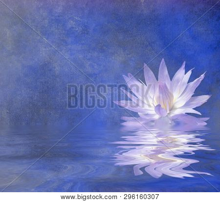 Lotus Blossom Textured Background. 3D rendering