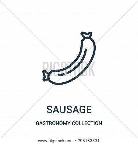 Sausage Icon Isolated On White Background From Gastronomy Collection. Sausage Icon Trendy And Modern