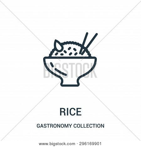 Rice Icon Isolated On White Background From Gastronomy Collection. Rice Icon Trendy And Modern Rice
