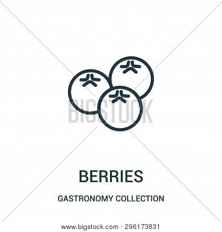 Blueberries Icon Isolated On White Background From Gastronomy Collection. Blueberries Icon Trendy An