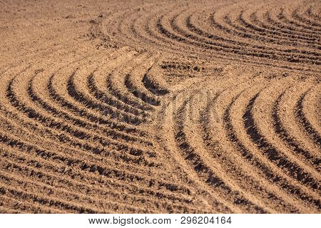 brown ground plowed field, harrow lines. Arable background. Pattern of curved ridges and furrows in a humic sandy field. A freshly ploughed field showing a geometric pattern of shadows in the furrows poster