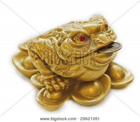 Chinese Feng Shui lucky money toad