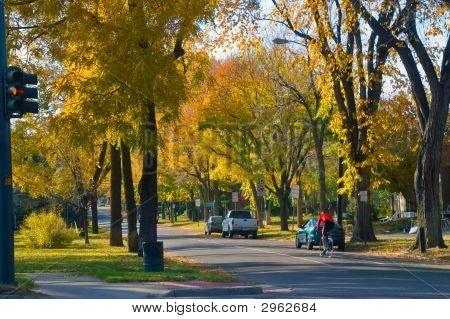 Denver City Street In Fall