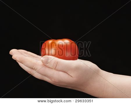 Tomatoe in the hands of child - palms facing up