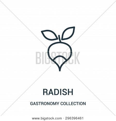 Radish Icon Isolated On White Background From Gastronomy Collection. Radish Icon Trendy And Modern R