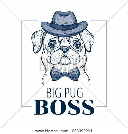Pug Boss Dog. T-shirt Print Design. Cool Animal Vector In Doodle Hand Drawn Style For Tee, Child, Ma