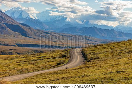The Scenic Landscape Of Denali National Park Alaska In Early Autumn