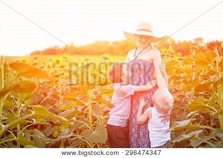 Happy Pregnant Mother Hugging Two Little Sons On Sunny Field Of Blooming Sunflowers.