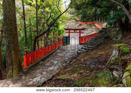 Japanese Torii and Fence in the forest near the Kamikura temple, Kumano Kodo track, Shingu, Japan