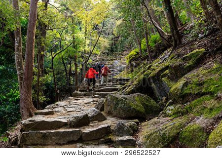 People trekking in the Kumano Kodo pilgrimage route leading to the Kamikura Shinto shrine, Shingu, Japan