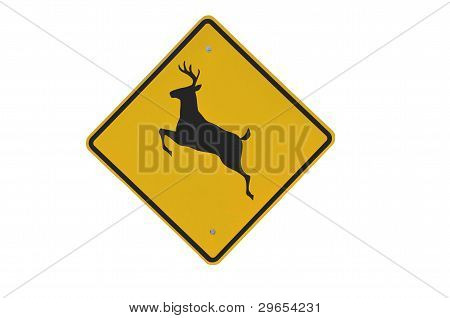 Isolated Deer Crossing Sign