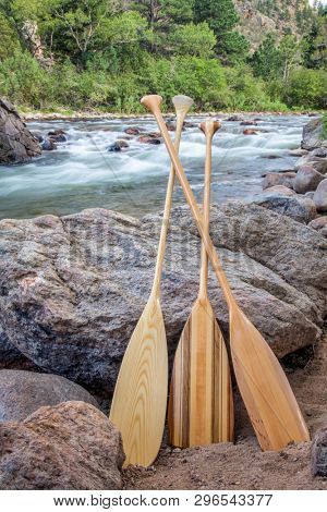 three wooden canoe paddles on shore of mountain river - Cache la Poudre RIver near Fort Collins, northern Colorado