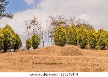 Unmarked Burial Mound On Hillside In Front Of Evergreen Bushes With Clouds In Background.