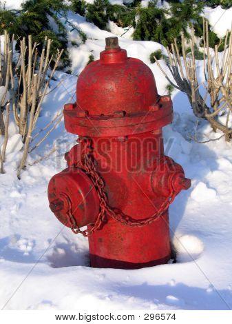 Snowy Fire Hydrant