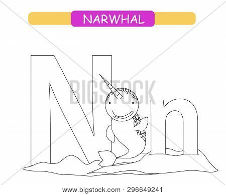 Letter N And Funny Cartoon Narwhal. Coloring Page. Animals Alphabet A-z. Cute Zoo Alphabet In Vector