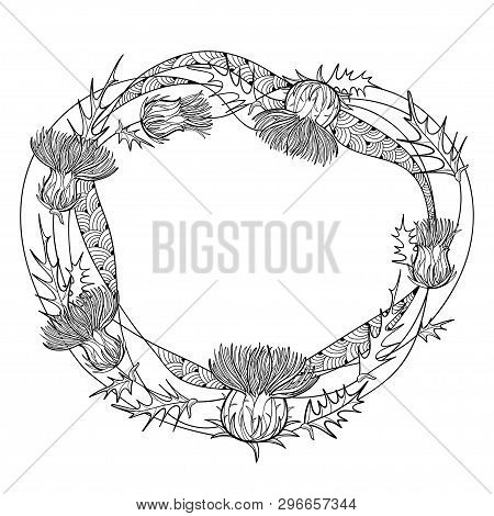Vector Round Frame Of Outline Thistle Or Carduus Plant, Spiny Leaf, Bud And Flower In Black Isolated