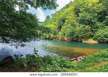 Lake Among The Beech Forest. Beautiful Summer Scenery In Vihorlat Mountains, Slovakia. Wonderful Des