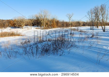 Snow Covered Prairie And Forest Landscape In Battle Creek Regional Park Of Saint Paul Minnesota