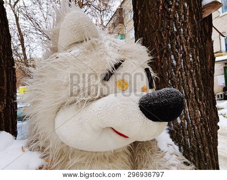 A Very Large Soft Toy For A Tree - A Bear Or A Squirrel