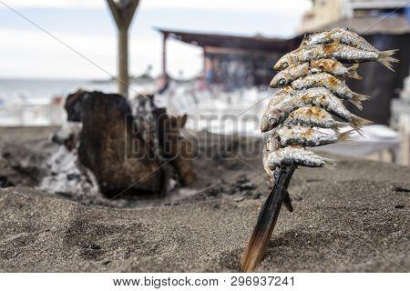 Skewers Of Sardines Pricked Over Grilled Earth