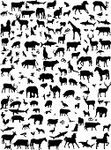 Collection of mix animals silhouette - vector poster