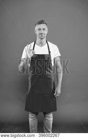 Waiter Or Bartender. Cafe Bar Barista Job Position. Man Cook Wear Apron. Mature Barista. Restaurant