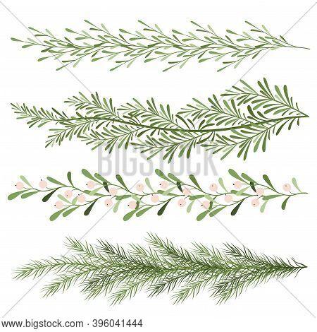 Set Of Christmas Plants. Sprigs Of Mistletoe, Coniferous Branches. Long Scenery. New Year Illustrati