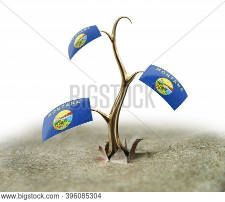 3d Illustration. 3d Sprout With Montana Flag On White