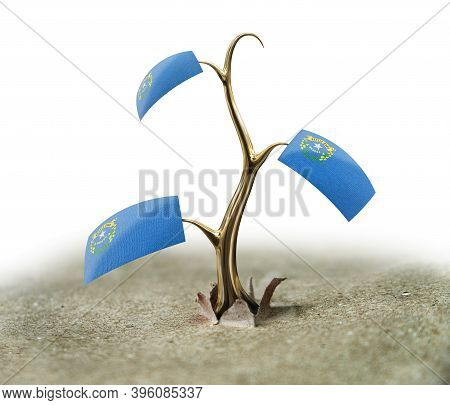 3d Illustration. 3d Sprout With Nevada Flag On White