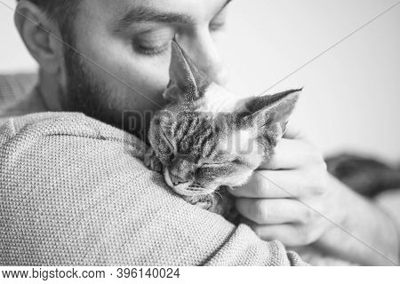 Close-up Of Cat And Man. Portrait Of A Devon Rex Kitten And Young Beard Guy. Handsome Animal-lover M
