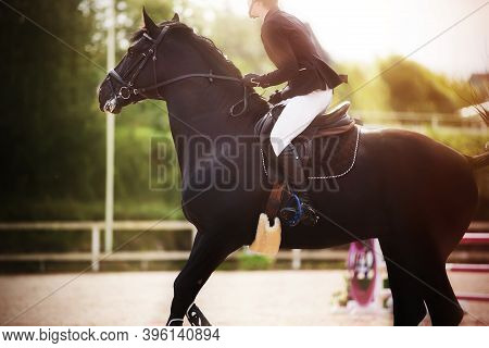 A Black Fast Horse With A Rider In The Saddle Gallops Briskly At Equestrian Sports Competitions On A